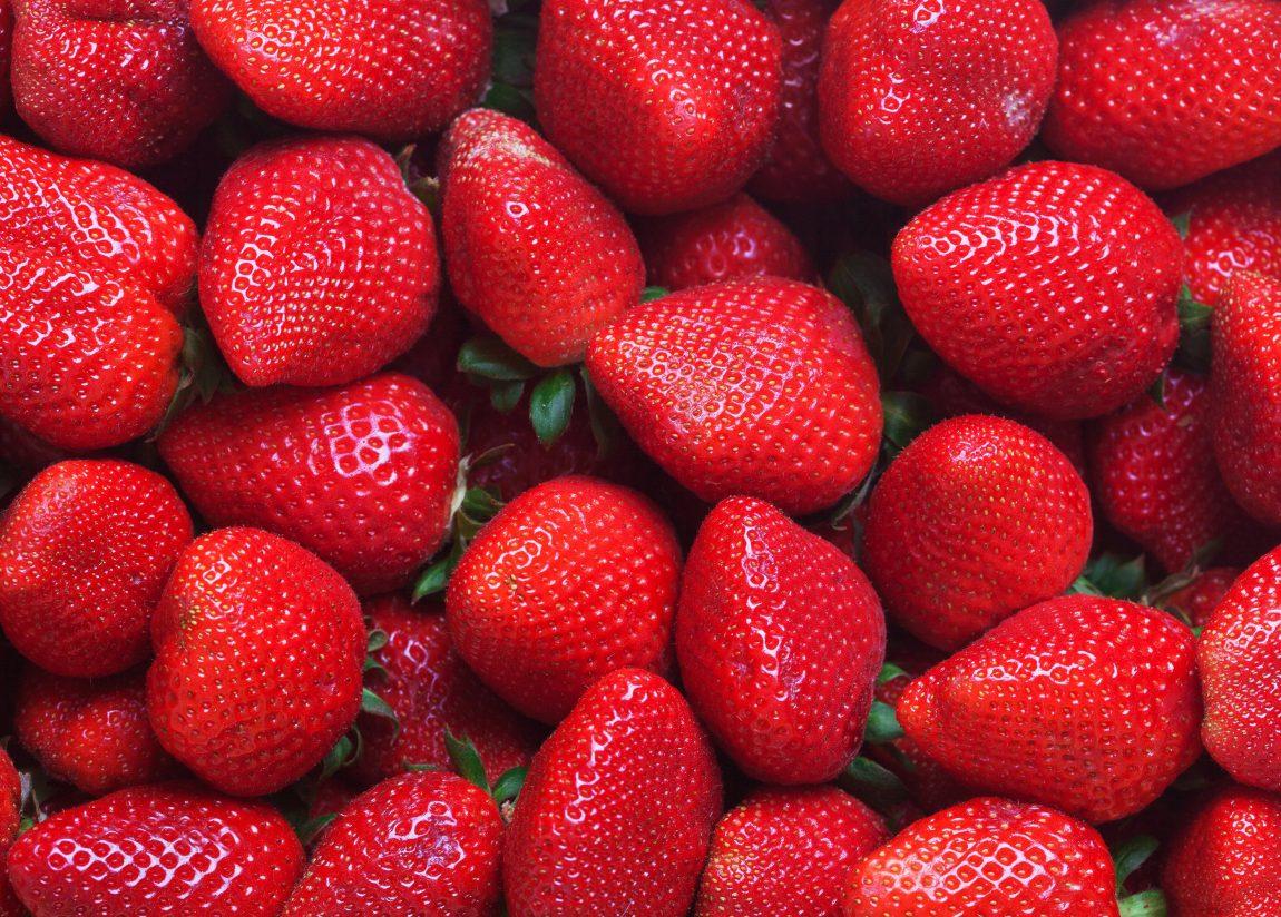 Growing Strawberries in Huelva