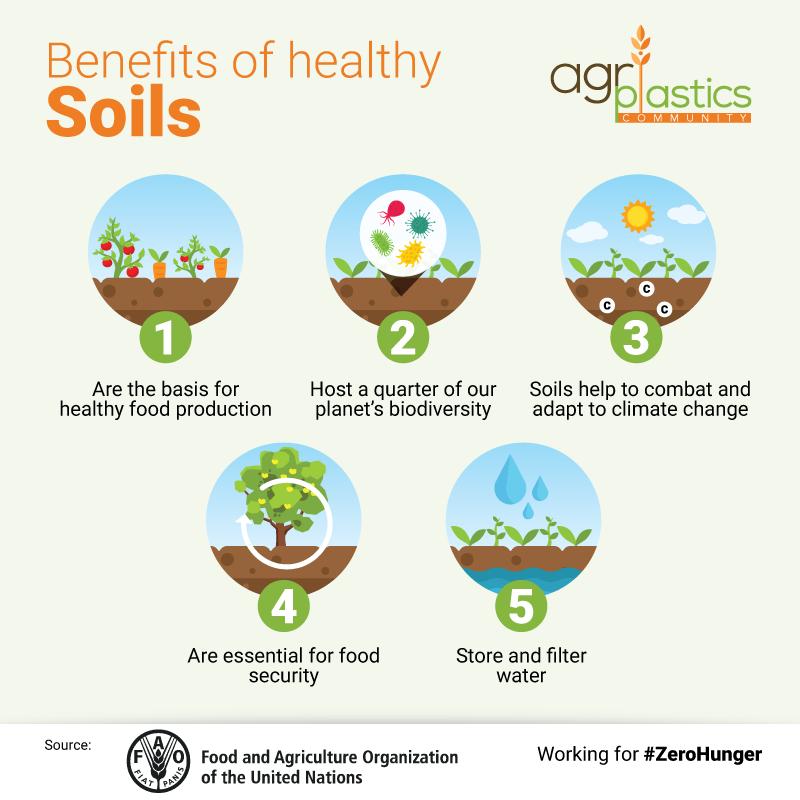 Benefits of Healthy Soils