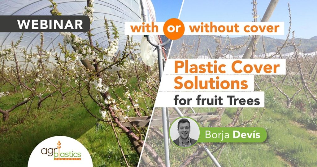 Banner Plastic Cover Solutions for Fruit Trees