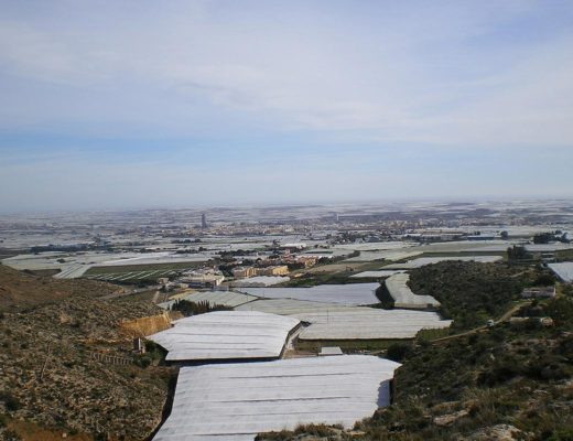 Crops in Almeria. Photo by: Ane. Dimensions modified to 1200x800 pixels. https://creativecommons.org/licenses/by/3.0/deed.es