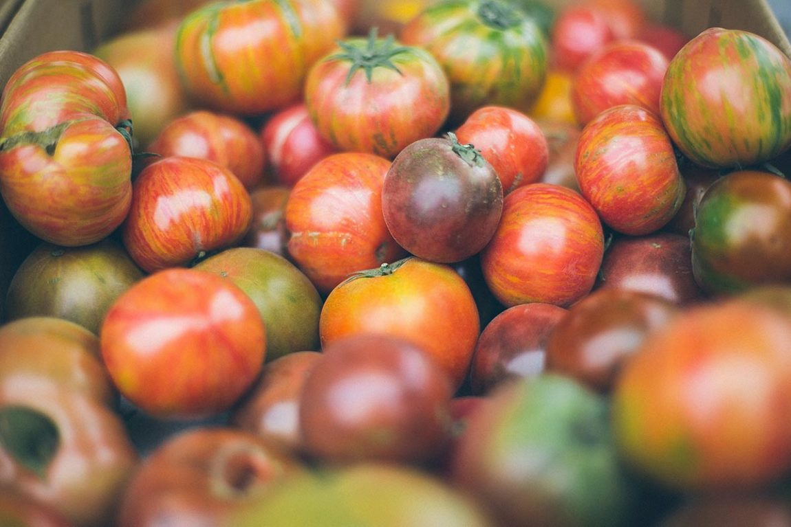 Export of tomatoes from Mexico to the United States. Photo by Anda Ambrosini on Unsplash