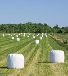 Plastics to prevent white mould in silage bales