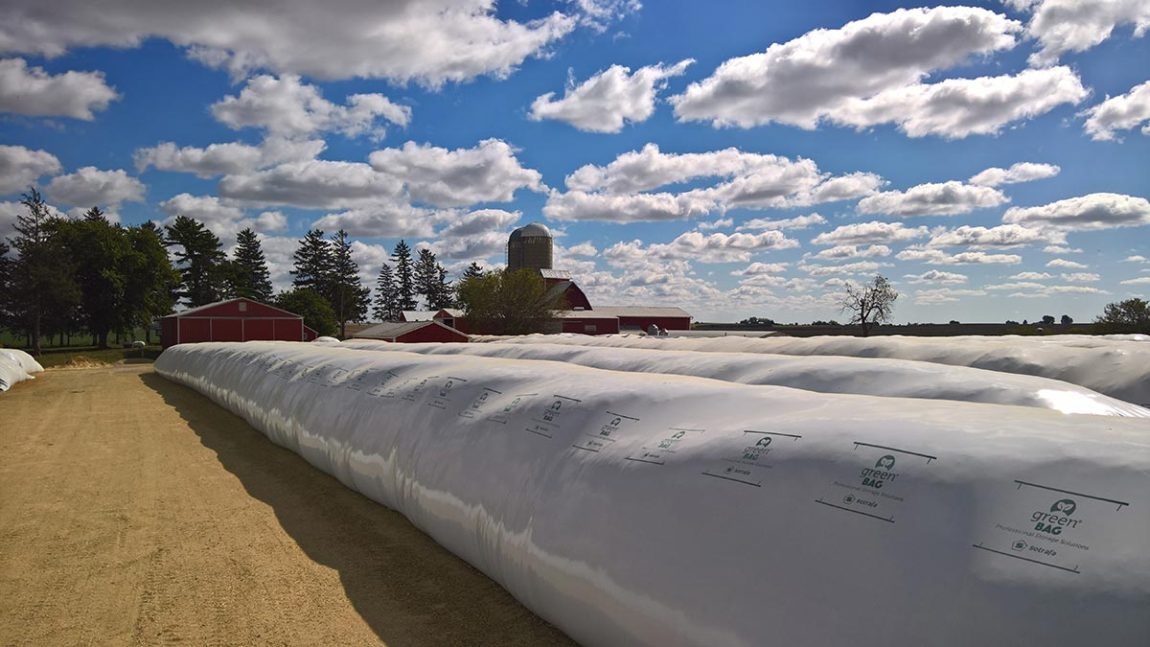 Silo bags over silo steel for grain storage