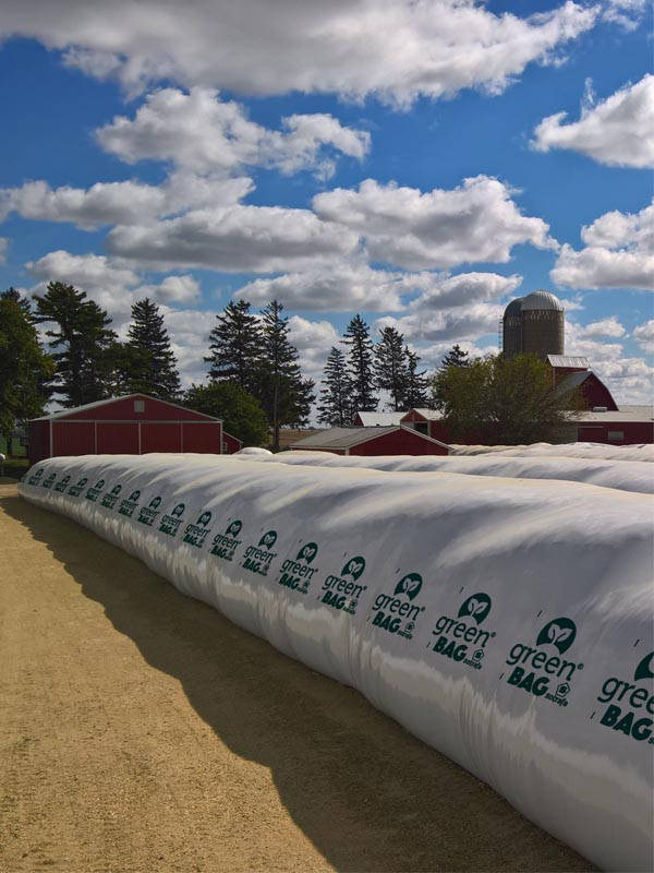 Temporary grain solutions using silobags