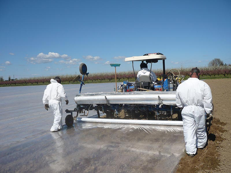 Totally Impermeable Films for disinfection